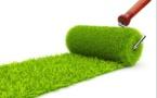 RSE : Faut-il adopter la greenblushing attitude ?